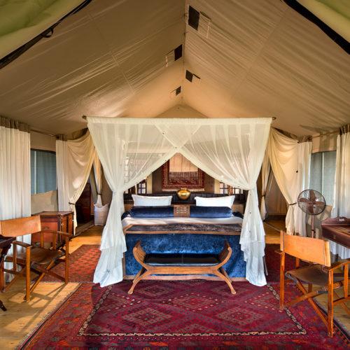 DUBA EXPLORERS CAMP GALLERY