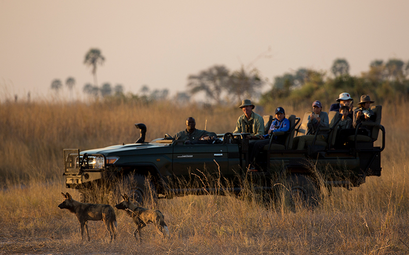 Zarafa is located in a place where wildlife can breathe freely, wild and unrestrained