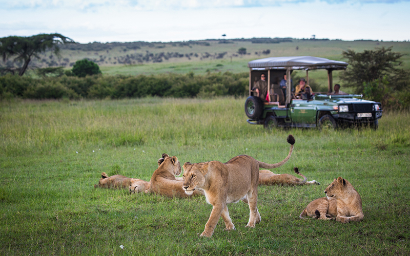 Some of Africa's most iconic wildlife areas