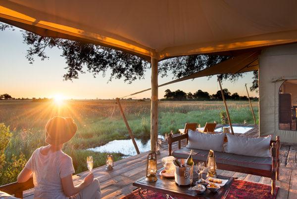 Duba Plains Camp Guest Suite Sunset