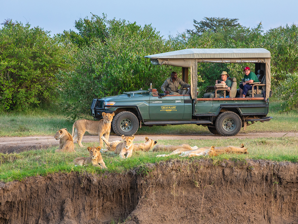 great-plains-conservation-mara-expedition-lions-game-vehicle