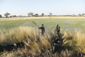 Guides become wildlife rangers