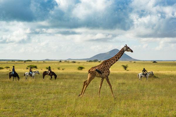 great-plains-conservation-safari-pioneers-ol-donyo-lodge-4