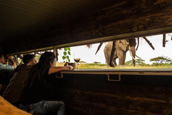 great-plains-conservation-safari-pioneers-ol-donyo-lodge-7