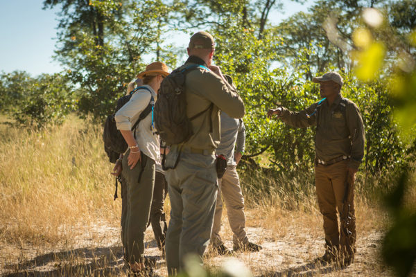 great-plains-botswana-expeditions-guide