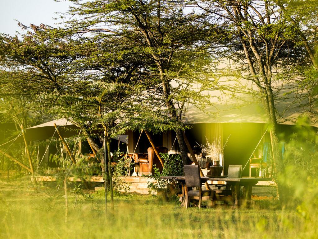 Lounge exterior Mara Expedition camp